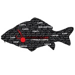 Наклейка Delphin CARP WORDS Sticker